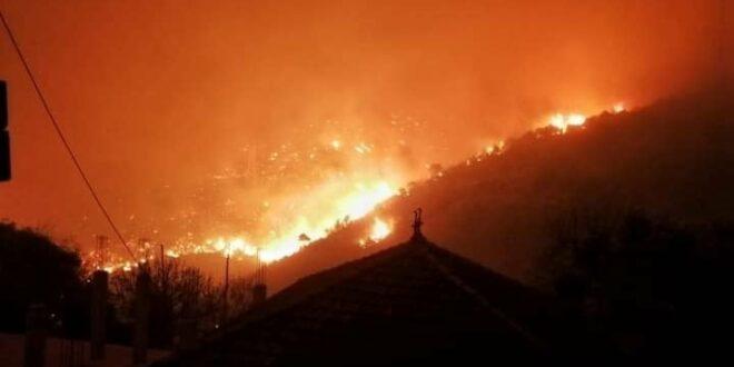 17346 حرائق الغابات فى الجزائر 1